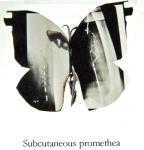 Subcutaneous promethea